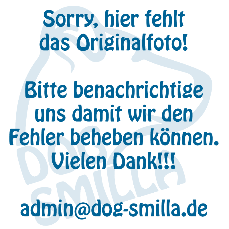 placeholder dog-smilla