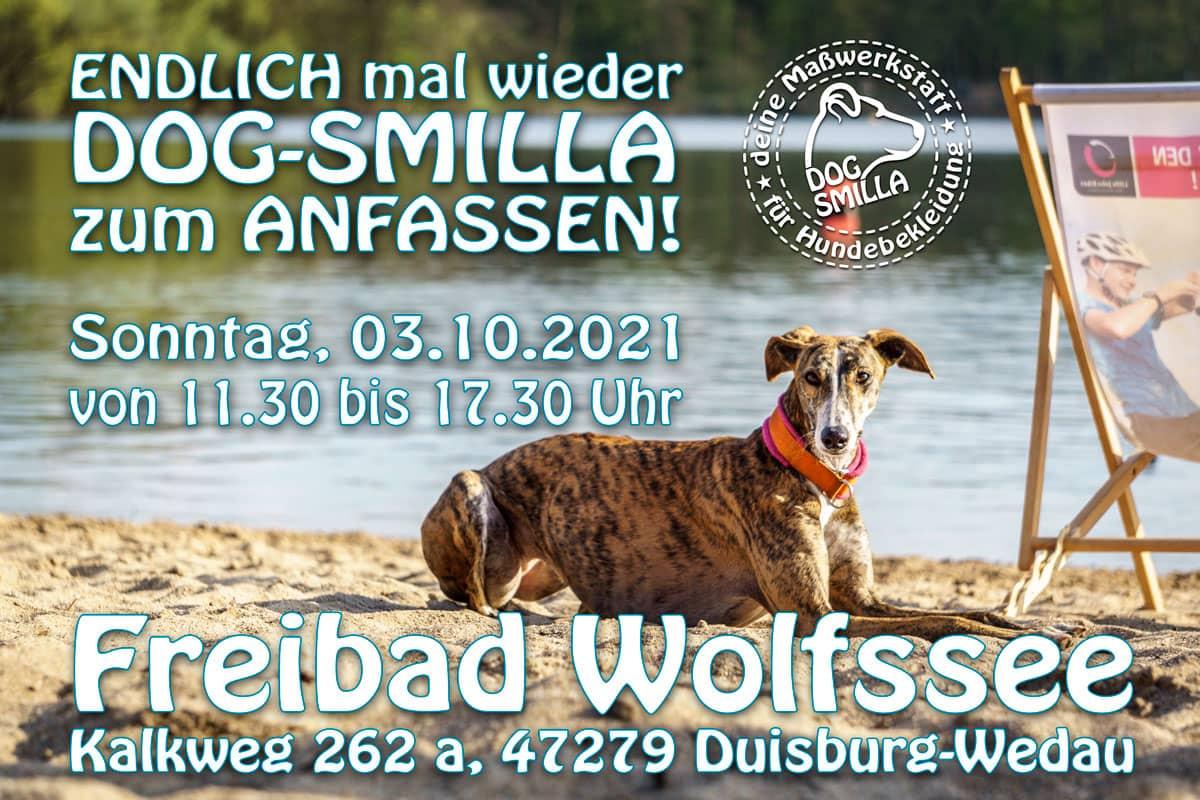 banner-galgohilfe-wolfssee2021-WEB